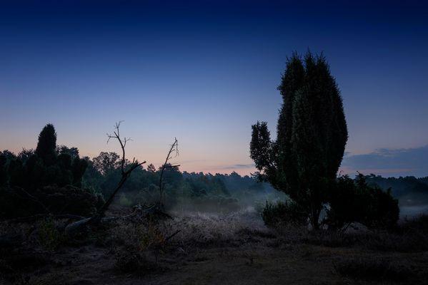 Vor Sonnenaufgang