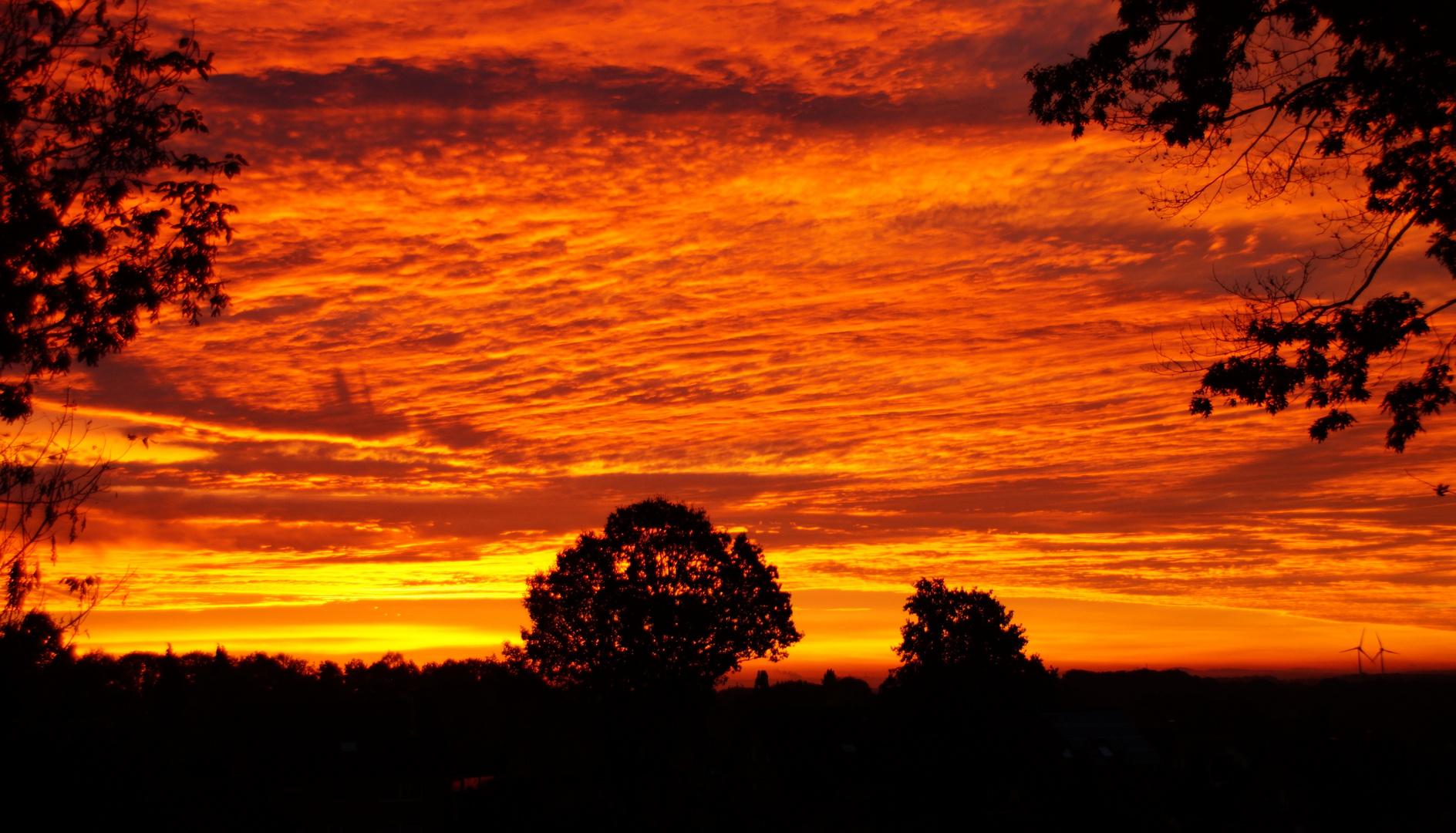 Vor Sonnenaufgang im Münsterland