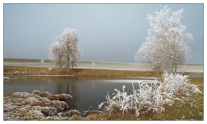Voralpenland im Winter