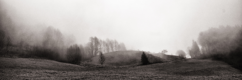 Voralpenlandschaft im nebel