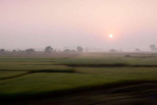 vorbeiziehende Felder in Indien