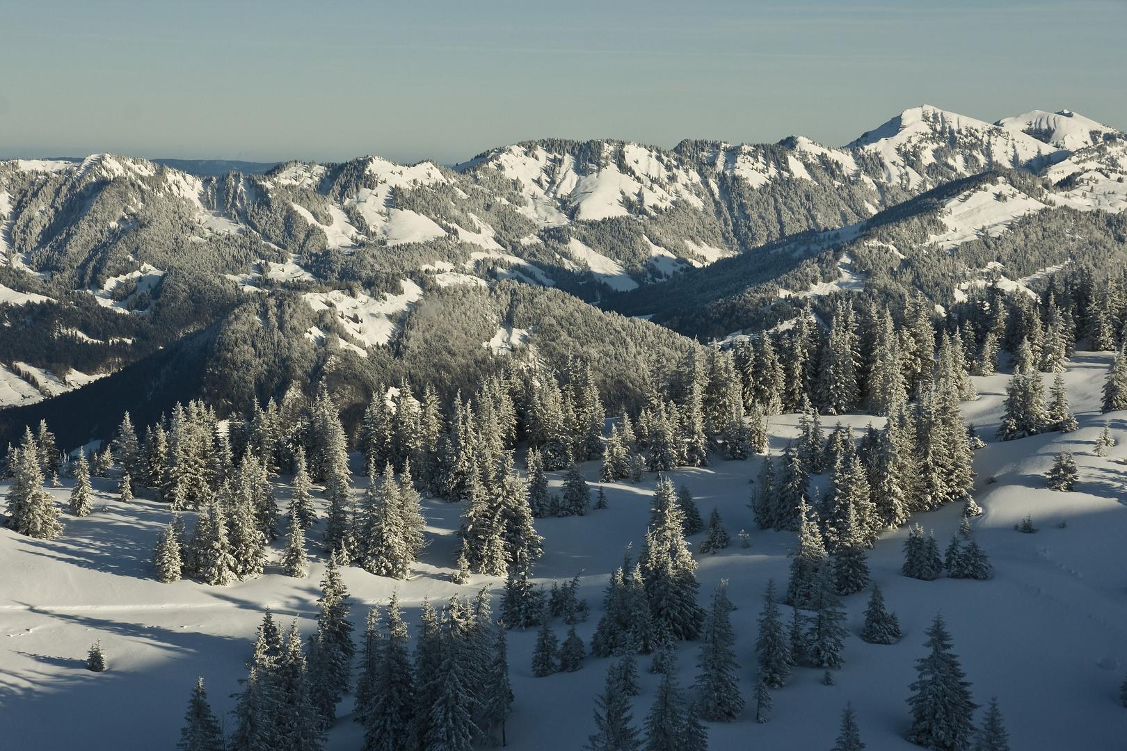 Vorderwälder Berge