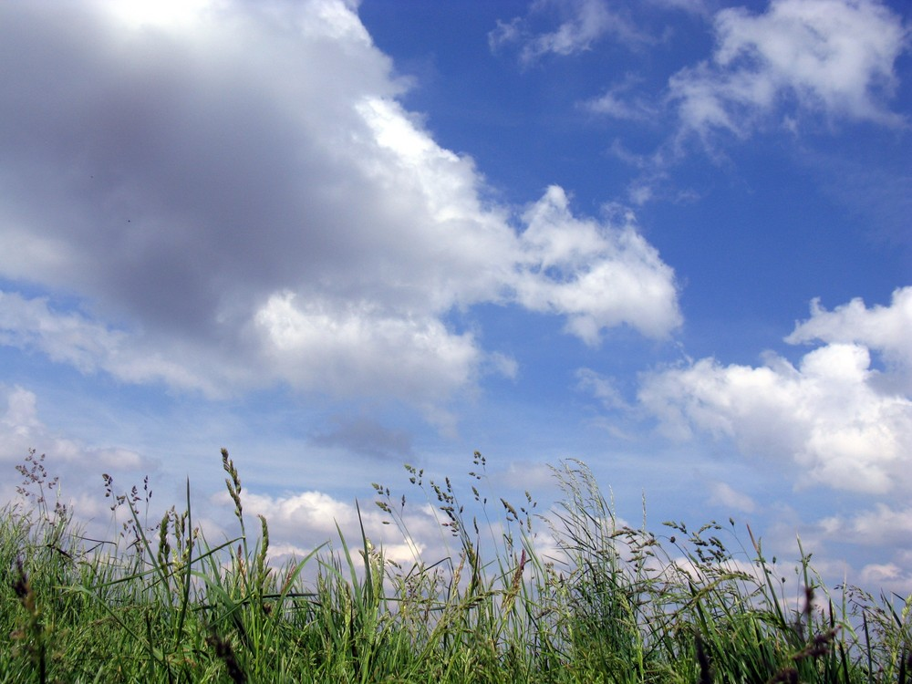 Vorgestern war das Wetter noch schön
