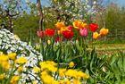 Vorschau auf den Frühling