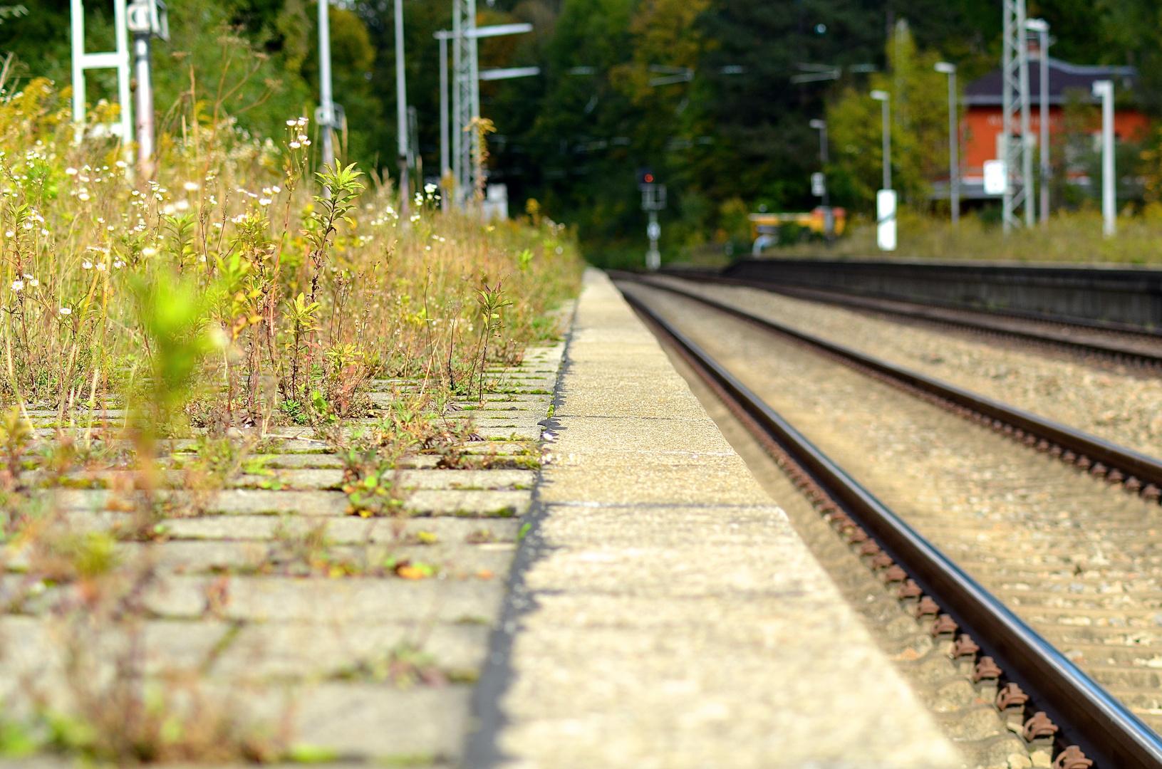 Vorsicht an der Bahnsteigkante !!!