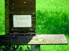 Vorsicht Bienen