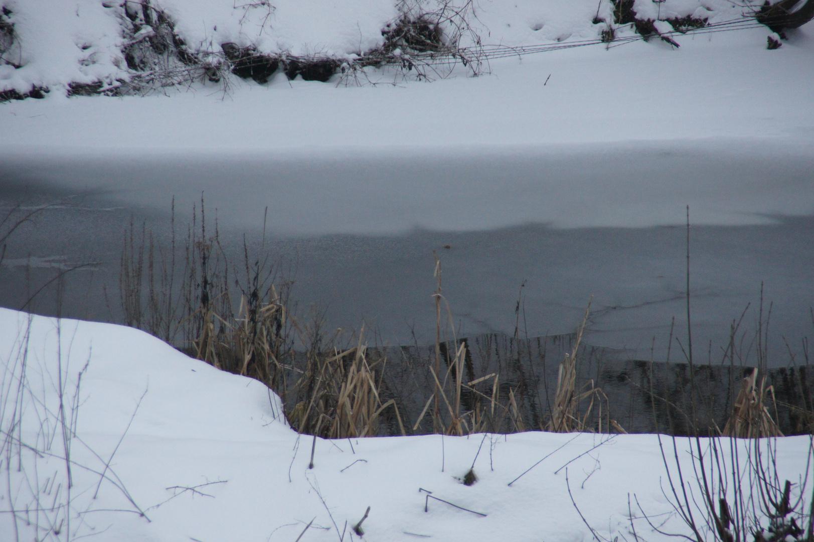VORSICHT GEBOTEN - Beim Betreten des Sees