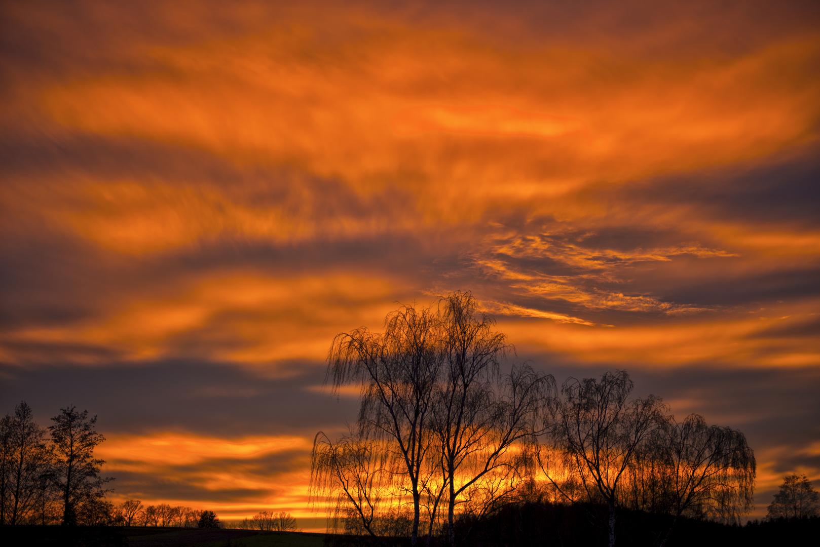 Vorweihnachtlicher Sonnenuntergang