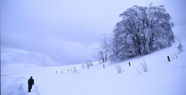 Vosges 4