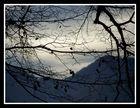Vosges