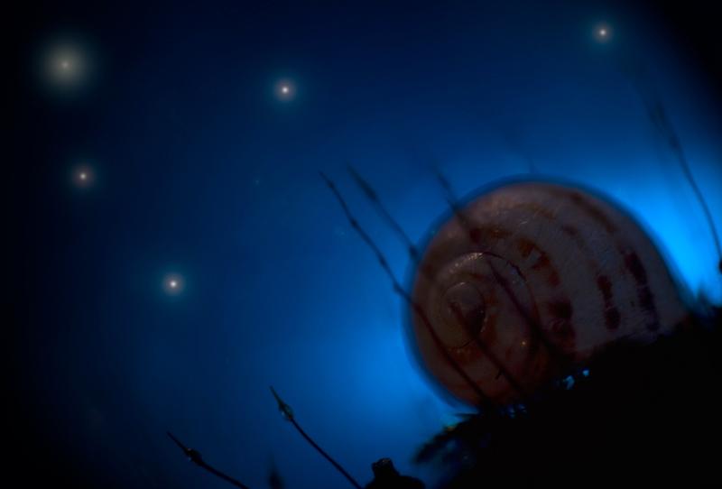 voyages nocturnes