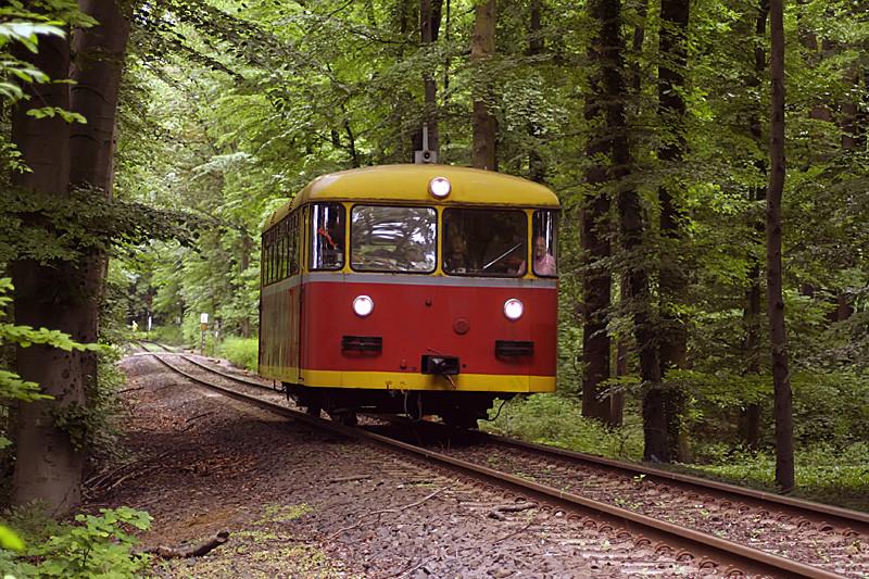 VT12 im Stadtwald