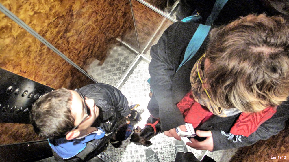 vue dans un ascenseur