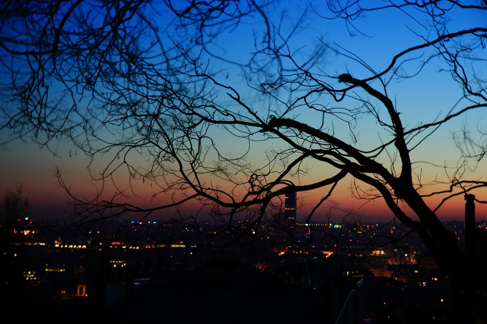Vue de Montmartre