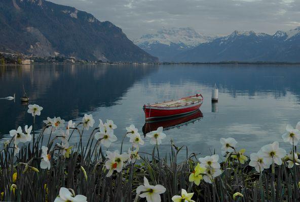 Vue du lac Léman, Territet-Montreux, VD.