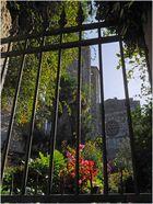 Vue sur la collégiale de la Romieu (Gers) à partir du jardin arrière