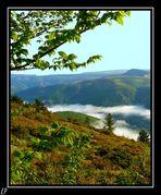 vue sur le Mont Lozére