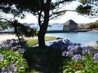 Vue sur le moulin du birlot de l'île de Bréhat