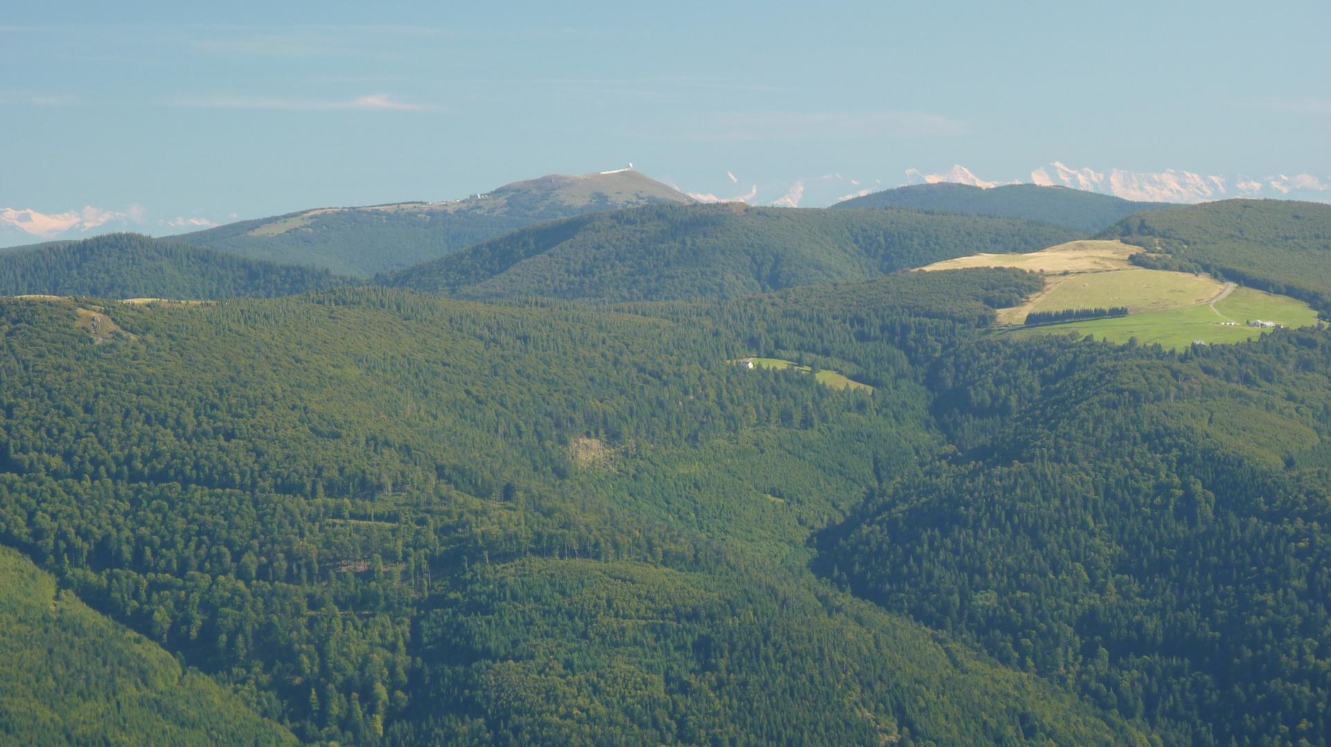 Vue sur les Alpes bernoises et le Grand Ballon depuis le Rainkopf