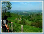 Vue sur les vallons Basques