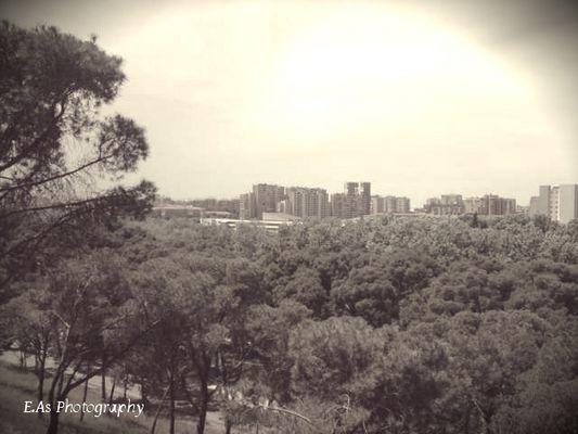 Vue sur Zaragoza