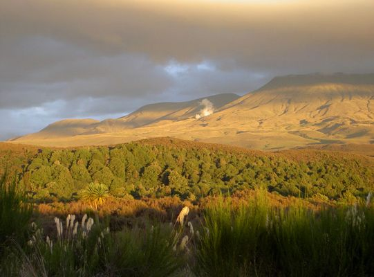 Vulkan in Neuseeland