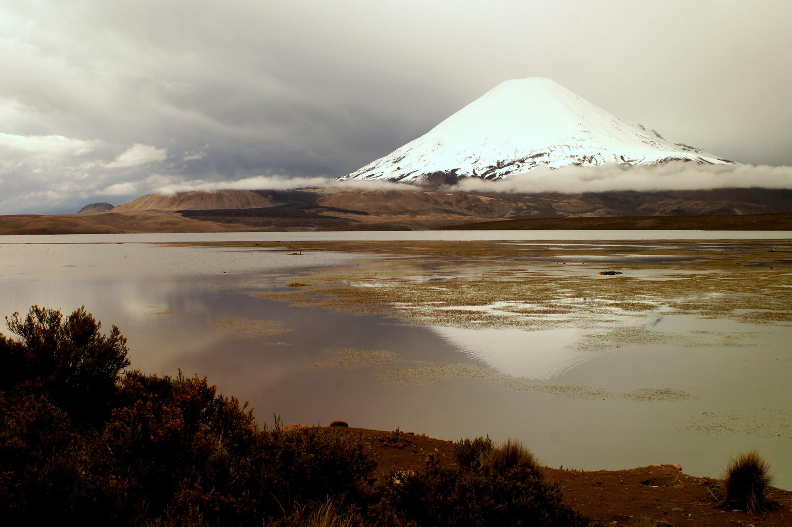 Vulkan Lauca Nationalpark Chile
