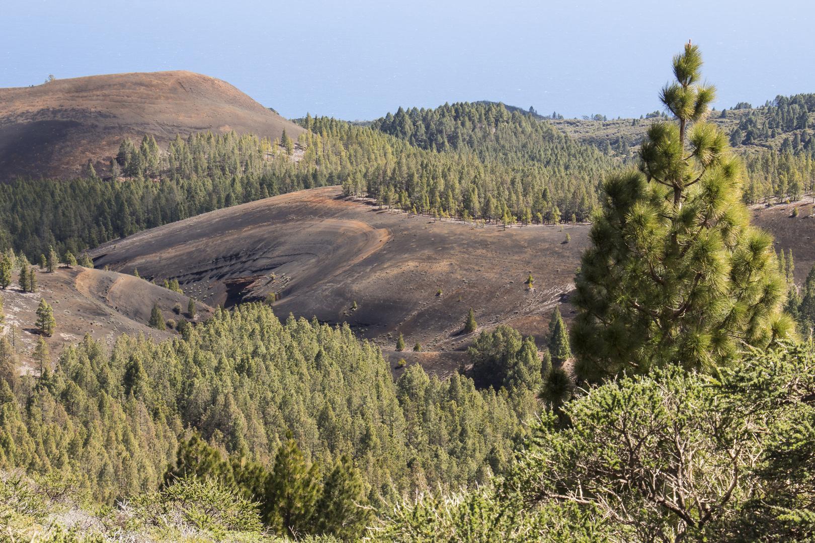 Vulkanlandschaft auf der Insel La Palma