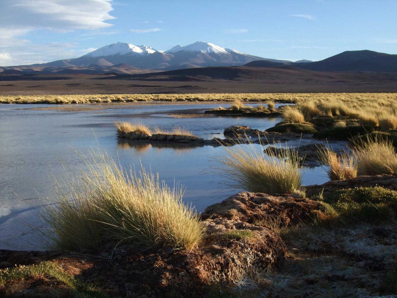 Vulkanlandschaft in der Atacamawüste