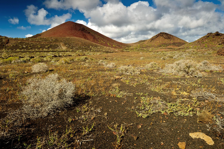 Vulkanlandschaft in Lanzarote