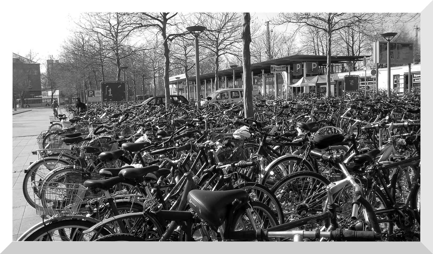 Vuoi una bicicletta?