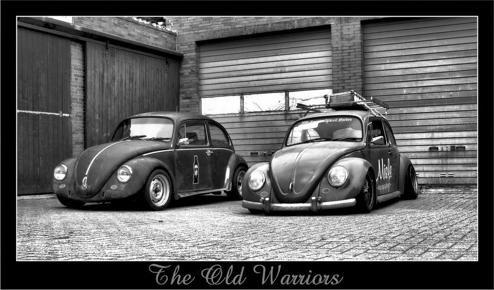 vw k fer the old warriors foto bild oldtimer. Black Bedroom Furniture Sets. Home Design Ideas