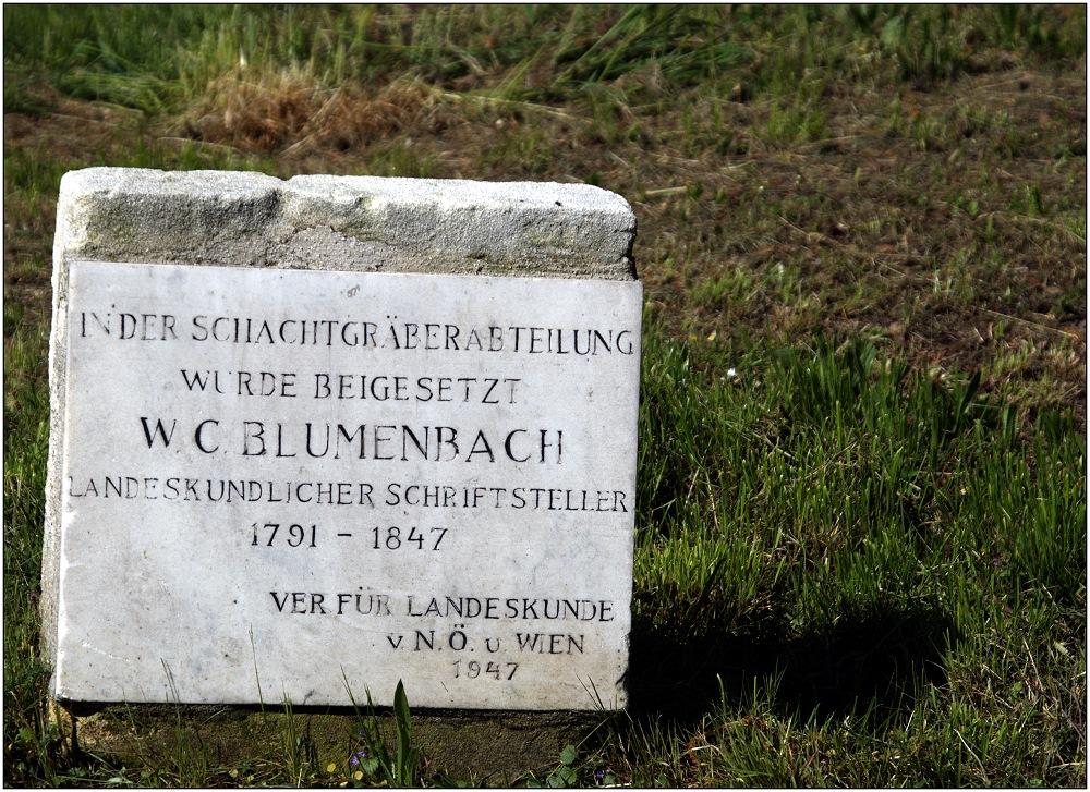 ... W. C. Blumenbach ...