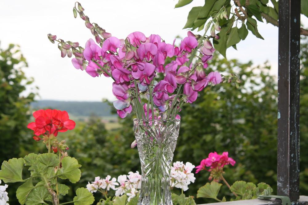 W I C K E N 2 in der Vase