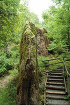 Wachsender Felsen in Usterling