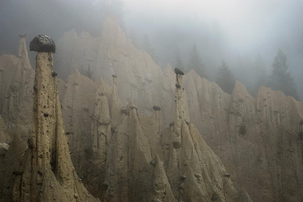 Wächter im Nebel