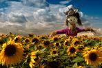 Wächterin der Sonnenblumen_2