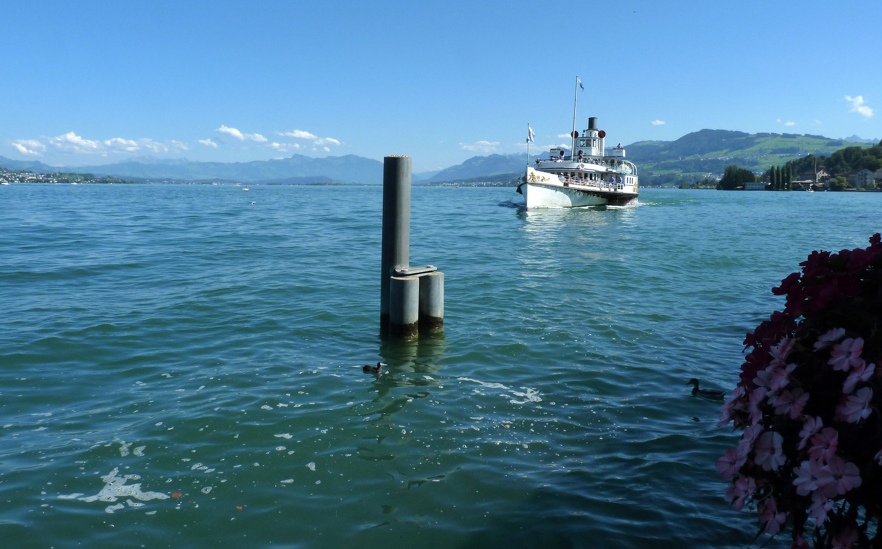 Wädenswil..02