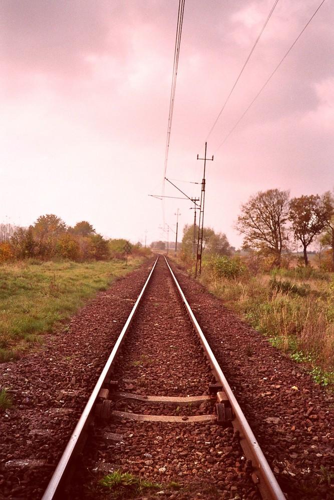 Wäre es in diesen melancholischen Landschaften gewesen ....