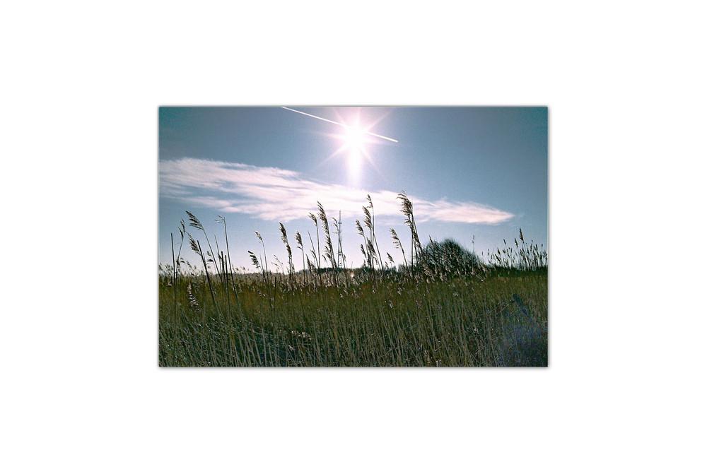 Wärmende Sonne
