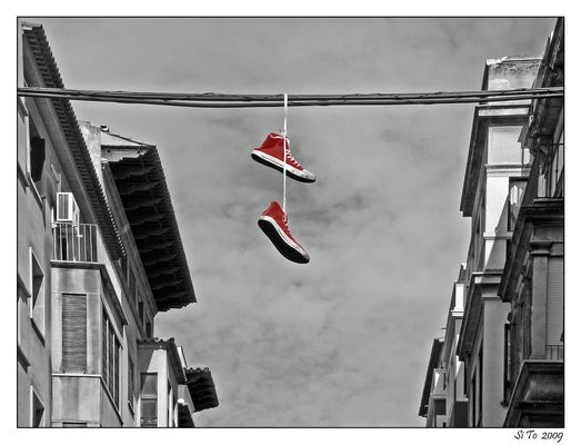 """wag the dog"" oder ""good old (red) shoe"" - ck -"
