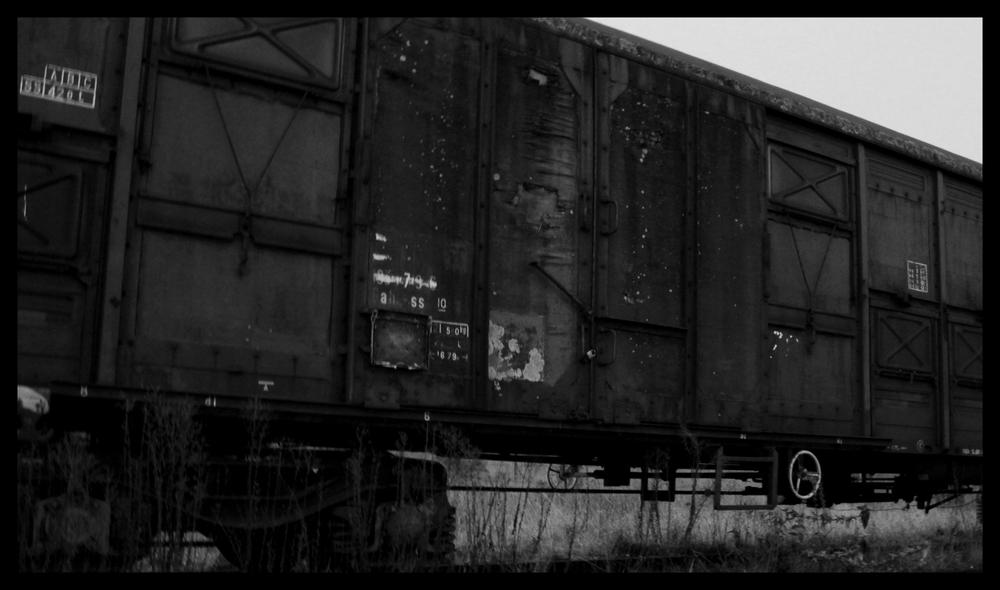 Wagon en Mono