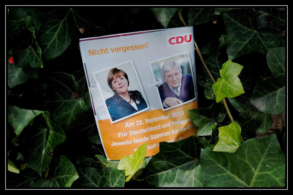 Wahlkampf ( 6 )