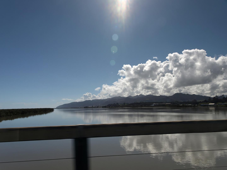 Waihou River