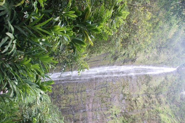 Waimoku Falls, Haleakala National Park auf Maui