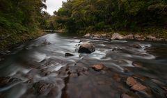 waipoua river...