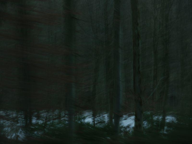 Wald 68