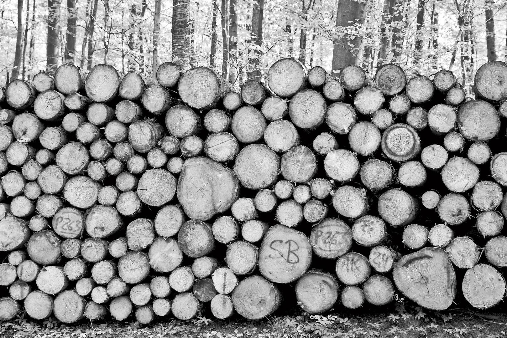 Wald gestapelt