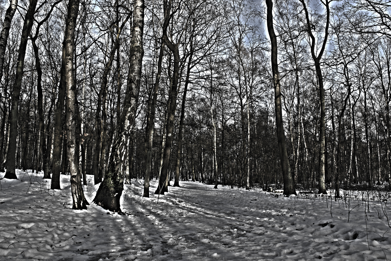 Wald HDR