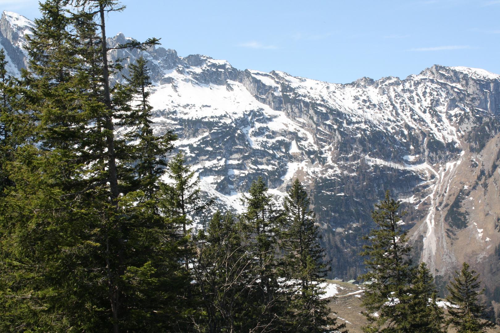 Wald und Berge, was will man mehr